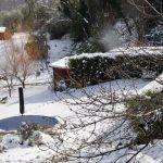 LUOGO: Casa Nettarina | AUTORE: Beatrice Monacelli